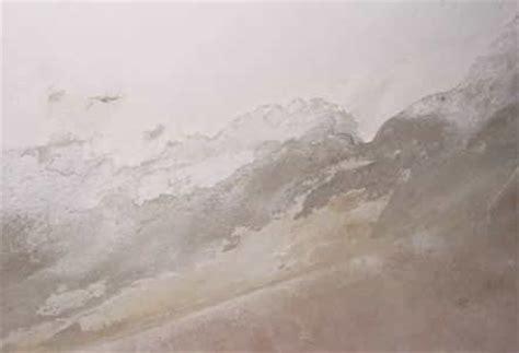 Wasserflecken Wand Trocknen by Wasser Und Feuchtigkeitssch 228 Den Beseitigen