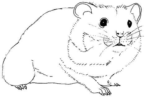 apprendre a cuisiner en ligne coloriage hamster sur jeudefille com