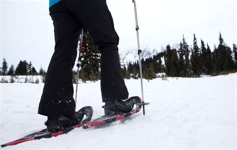 The Beginner?s Guide to Snowshoeing in Washington