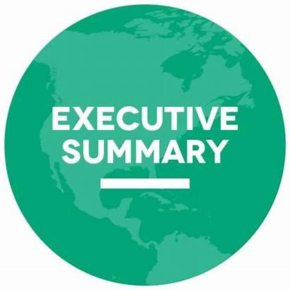 Executive Summary Report Civil Society Icons Reports