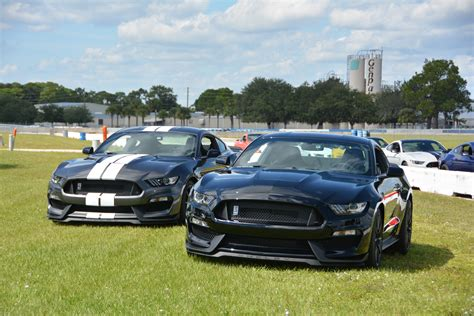 2016 Ford Shelby GT350 Test Drive Review - AutoNation ...