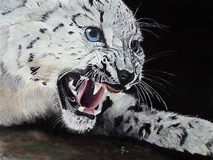 Weißer Wurm Katze : bild tiger wei er tiger katze gro katze von erhard s nder bei kunstnet ~ Markanthonyermac.com Haus und Dekorationen