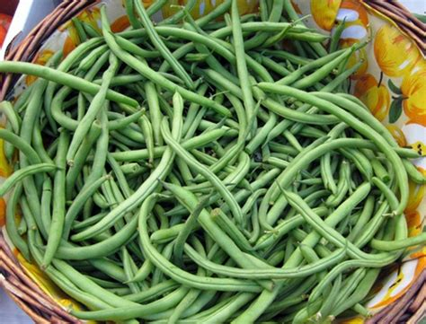 haricot verts crisp haricots verts with pine nuts recipe dishmaps
