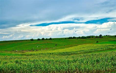image libre sur le terrain lagriculture rural paysage