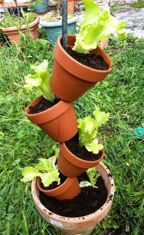 plante aromatique cuisine colonne de pots de fleurs guide astuces