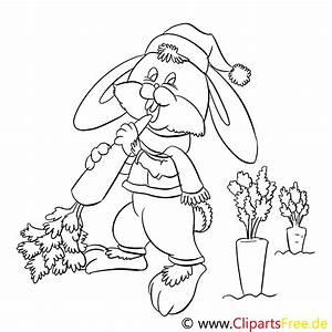 Hschen Isst Karotte Ausmalbilder Fr Kinder Gratis