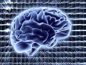 New Brain Activity State Exists In  U0026 39 Flat Line U0026 39  Coma