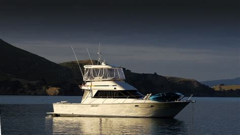 Boat Launch Auckland by Angie Charter Boat Auckland 43ft Launch Decked Out