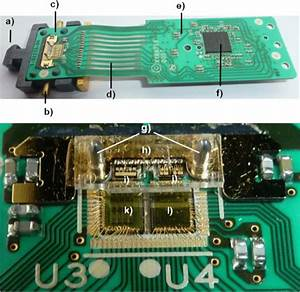 Parallel Optical Transceiver Circuit And Optical Interface