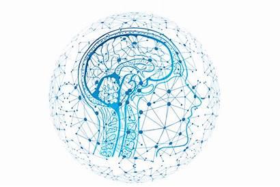 Neuroscience Future Science