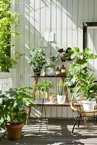 Balkon Gestaltungsideen Pflanzen : balkon pflanzen 29 ideen f r balkongestaltung den balkon ~ Lizthompson.info Haus und Dekorationen