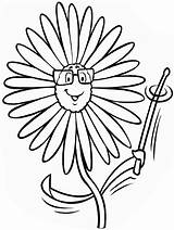 Daisy Cartoon Glasses Coloring Printable Flowers Categories sketch template