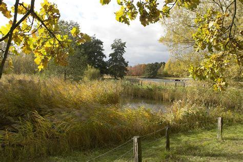Britzer Garten Events by Britzer Garten Berlin Foto Bild Jahreszeiten Herbst