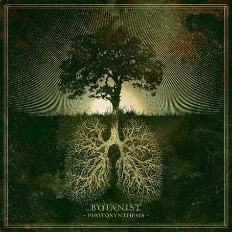 GUEST POST: Otrebor of Botanist- Top Albums of the Year ...