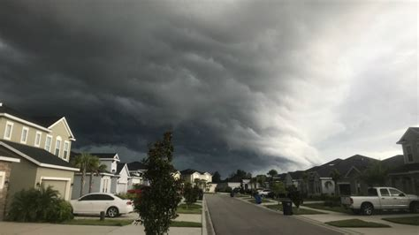 tampa area weather scattered showers storms sunday