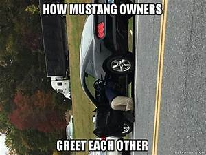 How Mustang Owners Greet Each Other