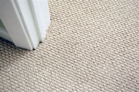 100 floor buffer vs sander carpet three method to