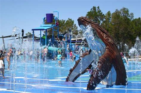wetside water education park tours hervey bay seerr