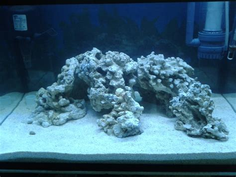 Live Rock Aquascape Designs by S C A R L E T Reef Day 11 9 6 2011 New Aquascape