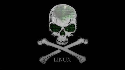 Linux Hacker Kali Wallpapers Security Code Experts