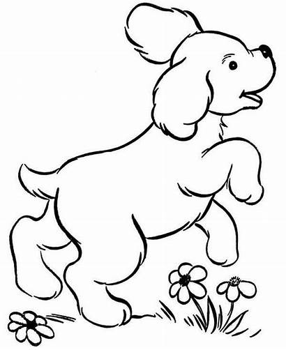 Coloring Puppy Pages Dog Printable Flower Dogs