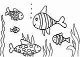 Coloring Fish Aquarium Fishing Swimming Rod Aloha Printable Tank Drawing Cartoon Fishtank Colouring Boyama Cranberry Drawings Getcolorings Butterfly Sayfaları Masivy sketch template