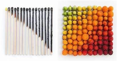 Objects Everyday Emily Blincoe Arrangements Satisfying Photographer