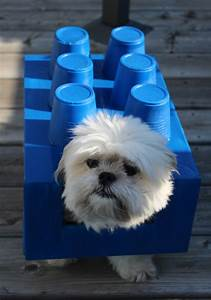 diy costumes for dogs lego dogo petguide
