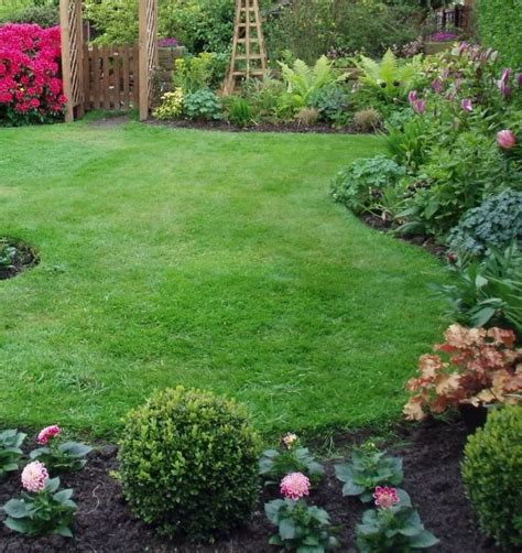 best hardy plants for borders sites and soils for hardy perennials