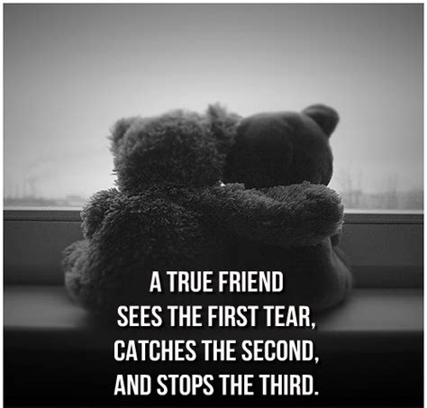 teddy bear quotes weneedfun