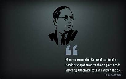 Ambedkar Dr Indian Constitution Quotes Memes Quote