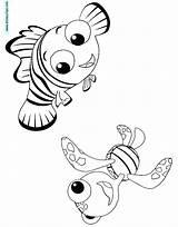 Nemo Coloring Squirt Desenhos Procurando Quirt Colorir Template sketch template