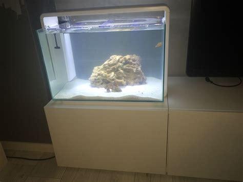 aquarium aquatlantis 60 litres design aquarium 60 liter design and ideas
