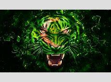 Pakistani Flag Google+