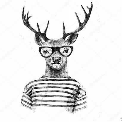 Deer Drawn Hand Dressed Illustration Vector Depositphotos