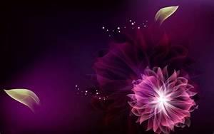 Purple, Abstract, Beautiful, Flower, Art, Wallpaper, Desktop, Hd, Wallpaper