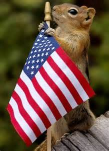 Animals with American Flag