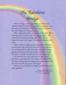 the rainbow bridge poem for cats trav s thoughts that day