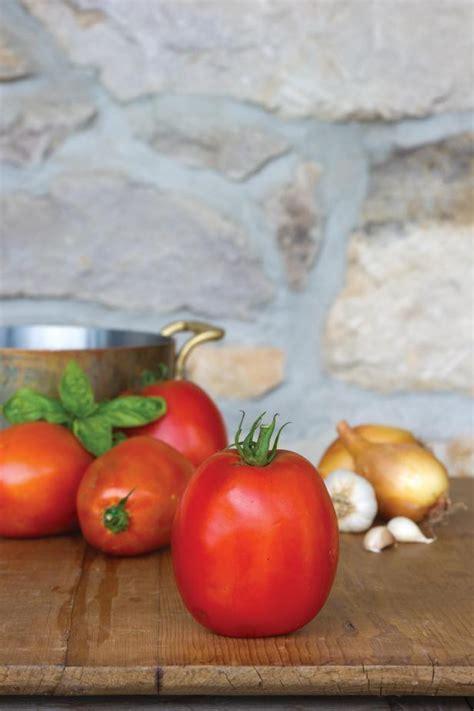 tomatoes  making sauce paste tomato