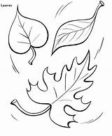 Fall Leaves Coloring Autumn Leaf Drawing Simple Ground Noix Bricolage Faire Mariage Doghousemusic Visiter Guardado Desde Dibujos Colornimbus Bulkcolor Photomaton sketch template