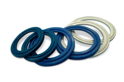 Western Rubbers India Pvt Ltd |tri-clamp Gasket
