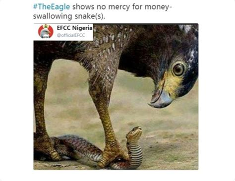Efcc Reacts On Claims That Snake Swallowed N36m In Jamb