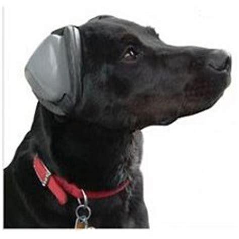 muttmuffs gehoerschutz fuer hunde activedogsde