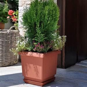Square, Plastic, Plant, Pot, 31cm, Terracotta
