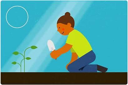 Plant Animated Give Gardening Illustrations Kid Menu
