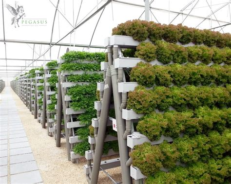 Vertical Gardening System by Pin By Adam Barty On Hydroponics Garden Hydroponic