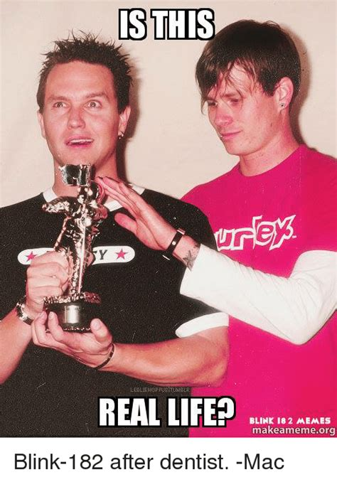 Is This Real Life Meme - funny blink 182 memes of 2016 on sizzle alive