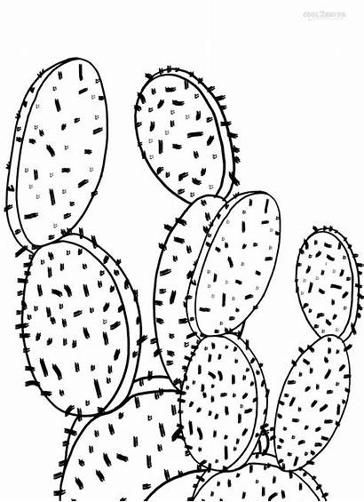 Cactus Coloring Pages Printable Desert Drawing Pear
