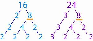 Mathspace :: Trees With Multiple Branches  Factor