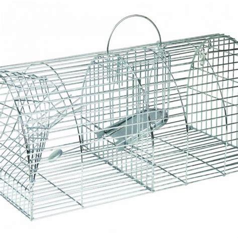 gabbia ratti gabbia per la cattura multipla di ratti servizipid store